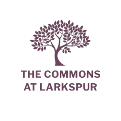 The Commons at Larkspur Opens in new window